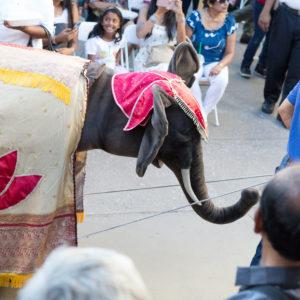 Parade | Sri Lanka Day